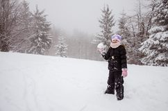 Зима и снежок стоковое изображение rf