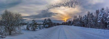 Зима и солнце Стоковые Изображения