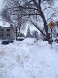 зима Канады Стоковые Изображения RF