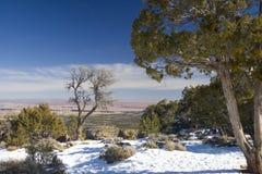 зима каньона грандиозная Стоковые Фото