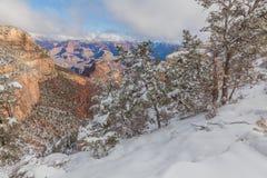 зима каньона грандиозная Стоковое Фото