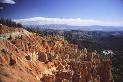 зима каньона bryce Стоковые Изображения