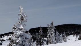 Зима Колорадо Стоковое фото RF