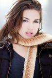 зима красотки Стоковые Фотографии RF