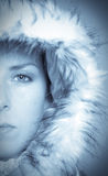 зима красотки стоковые фото