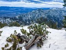 зима Лаке Таюое Стоковое фото RF