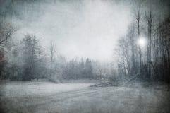 зима ландшафта изображения grunge Стоковое Фото