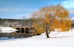 Зима ландшафта снега Herndon Вирджинии стоковое изображение rf