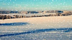зима ландшафта снежная видеоматериал