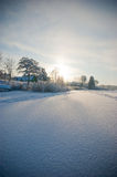 зима ландшафта Стоковые Фотографии RF