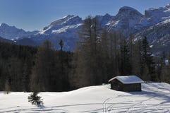 зима ландшафта Стоковое фото RF