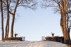 зима ландшафта Стоковая Фотография