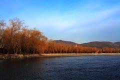 зима лета дворца утра Стоковое Фото