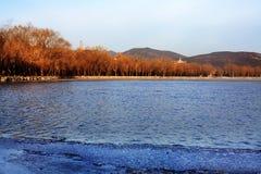 зима лета дворца Стоковые Изображения