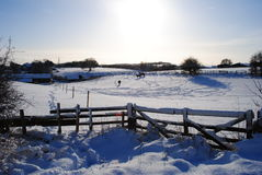 зима лужка стоковое изображение
