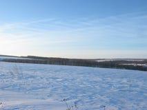 зима луны ландшафта hoarfrost пущи вечера стоковые фотографии rf