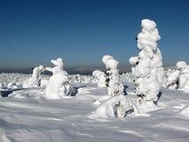 зима места Стоковая Фотография