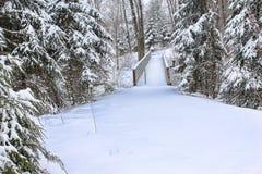 зима места Стоковые Фото