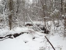 Зима Миссури Стоковое фото RF