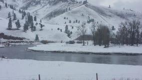 Зима Монтаны Стоковые Изображения