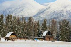 зима Монтаны Стоковое Изображение RF