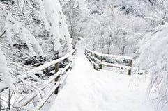 зима моста стоковая фотография rf