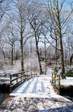 зима моста Стоковые Фото