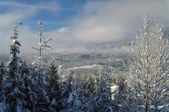 Зима на горах Стоковые Фото