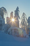 Зима на Лапландии стоковые изображения