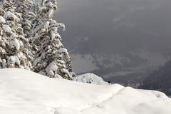 Зима на пике Suhardul Mic с черной козой в предпосылке стоковые изображения