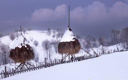 Зима на улице Стоковые Изображения RF