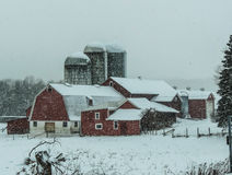 Зима на ферме Стоковые Фото