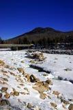 Зима Новой Англии Стоковая Фотография RF