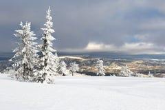 зима Норвегии ландшафта Стоковые Изображения