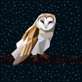 Зима ночи сыча низко поли Стоковые Фото