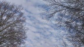 Зима Огайо Стоковые Фотографии RF