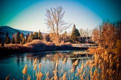 зима озера Стоковые Изображения