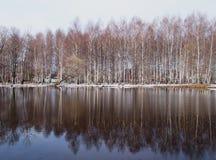 зима озера Стоковая Фотография RF