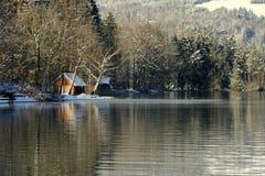 зима озера Стоковая Фотография