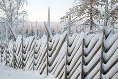 зима орнамента Стоковая Фотография RF
