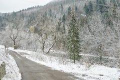 зима дороги сельская Стоковая Фотография RF