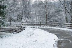 зима дороги сельская Стоковая Фотография