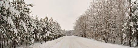 зима 2 дорог Стоковая Фотография