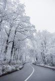 зима 2 дорог Стоковая Фотография RF
