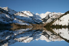 зима отражений Стоковая Фотография RF