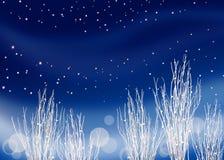 зима ощупывания Стоковые Фотографии RF
