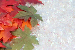 зима падения Стоковые Фотографии RF