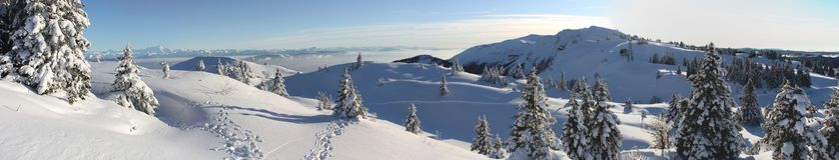зима панорамы Стоковые Изображения