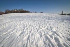 зима парка города Стоковые Фотографии RF