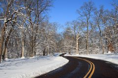 зима парка ландшафта Стоковая Фотография